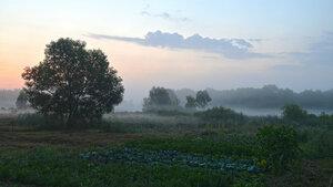 Утро в деревне (26).